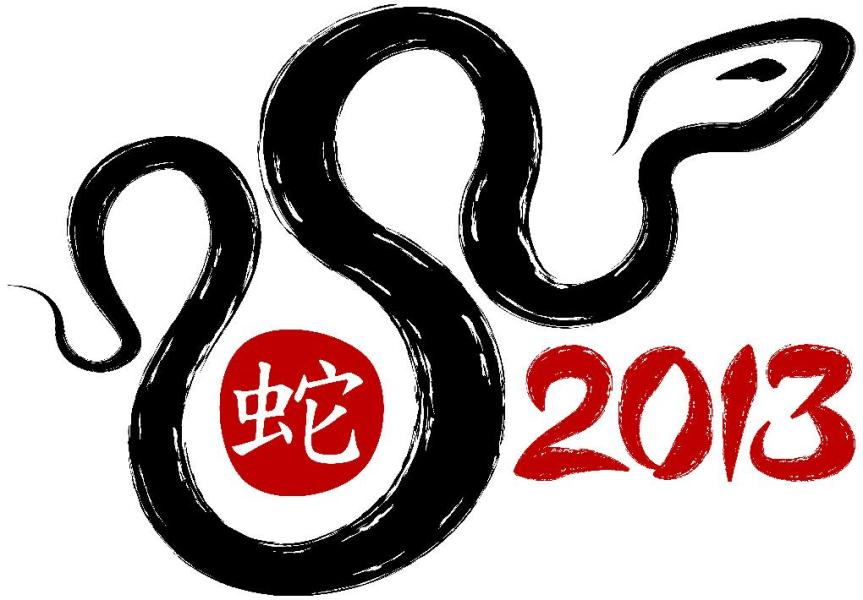 Year of the Snake and What it Means forYou