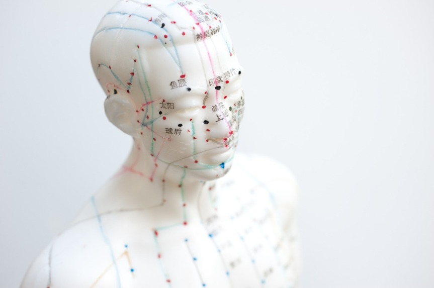 Back to Basics: How an Acupuncturist Understands theBody