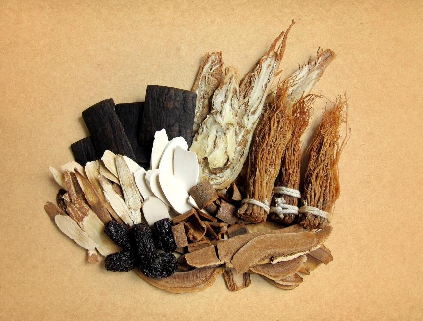 What Chinese Herbal Medicine Theory Teaches Us about Everyday Life