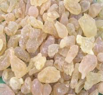 Essential Oil Profile of the Month- Frankincense (Boswellia carterii)